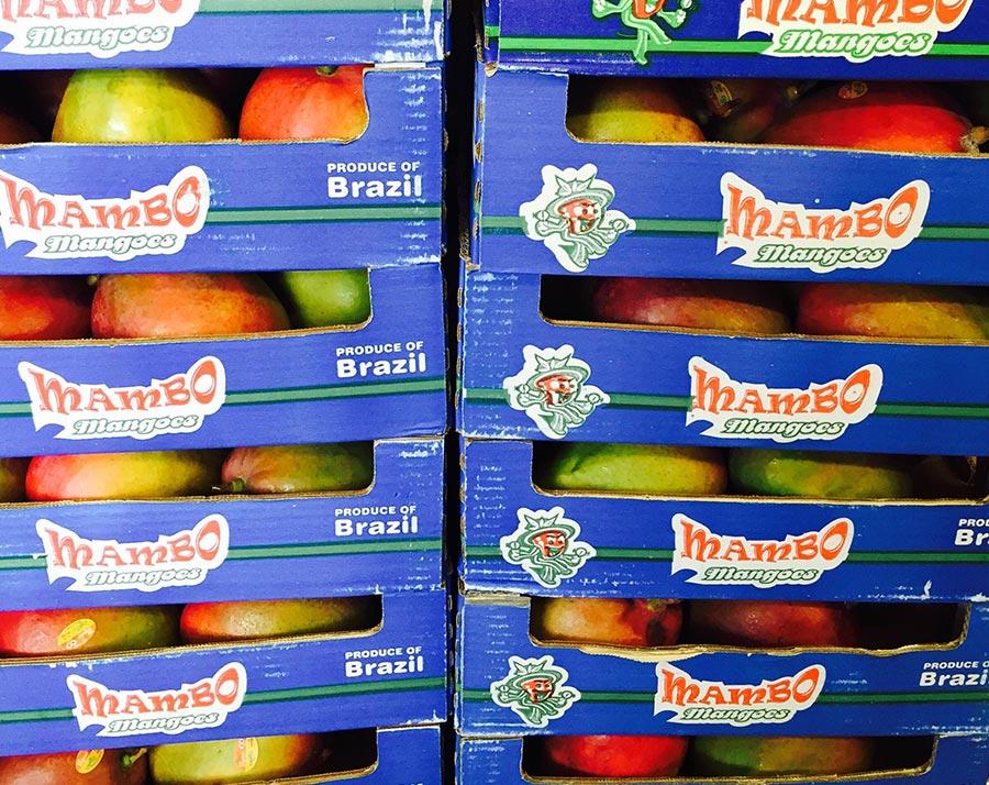 Mangos Mambo